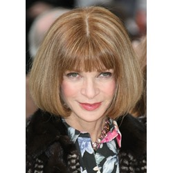 Bob Hairstyle Top Quality Custom Heat Resistant Wig Beautiful and Charming 12 Inches