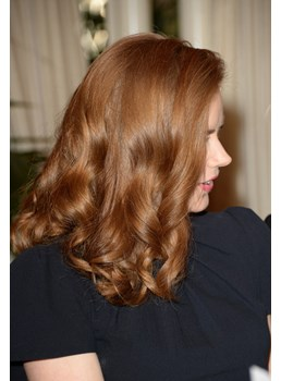 Amy Adams Long Curly Full Lace Natural Curly Human Hair Wigs14 Inches