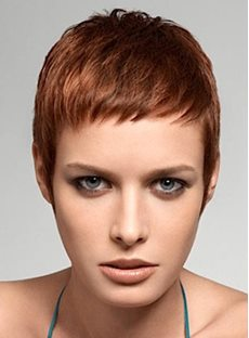 Super Short #33 100 Human Hair Monofilament Top Wig for White or Black Women