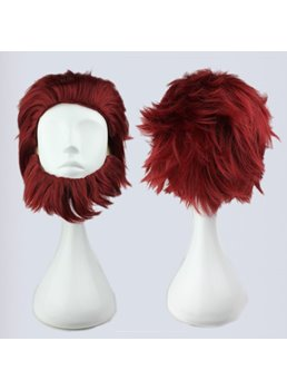 Fate Zero Rider Hairstyle Synthetic Hair Cosplay Wigs