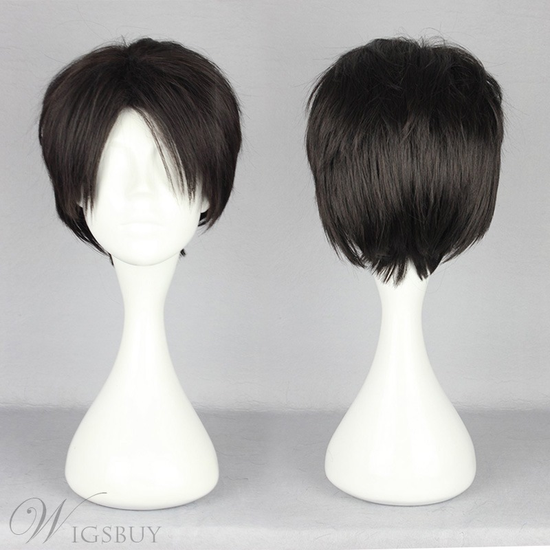 Japanese Shingeki no Kyojin Series Black Short Straight Cosplay Wigs 12 Inches