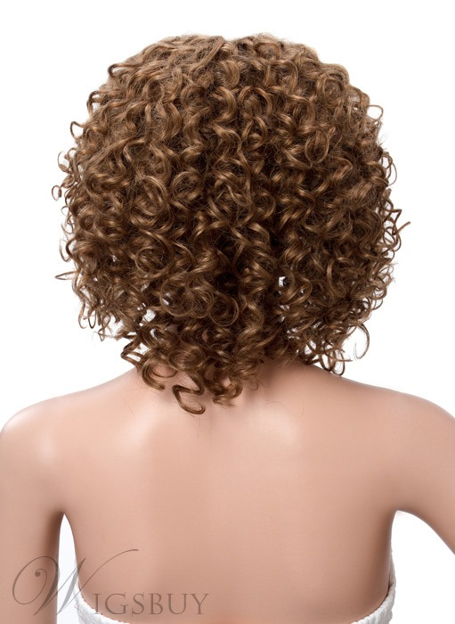 Afro American Kinky Curly Human Hair Lace Front Wigs 12 Inches