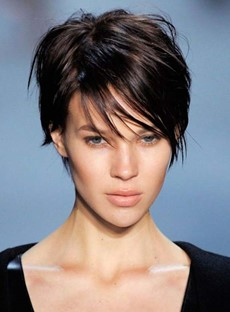 Short Straight Capless 100% Human Hair Wig