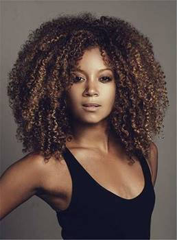 Medium Graceful Curly Kinky Synthetic Hair Lace Front African American Women Wig 14 Inches