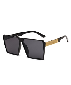 New Style Square Frame Sunglasses