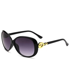 European Fashion Resin Sunglasses