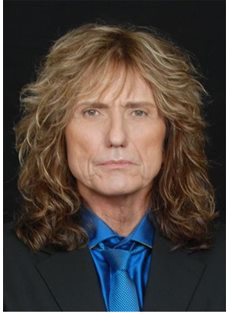 David Coverdale Hairstyle Synthetic Wavy Hair Men's Wig