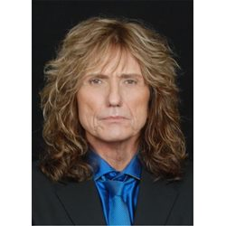 David Coverdale Hairstyle Synthetic Wavy Hair Mens Wig