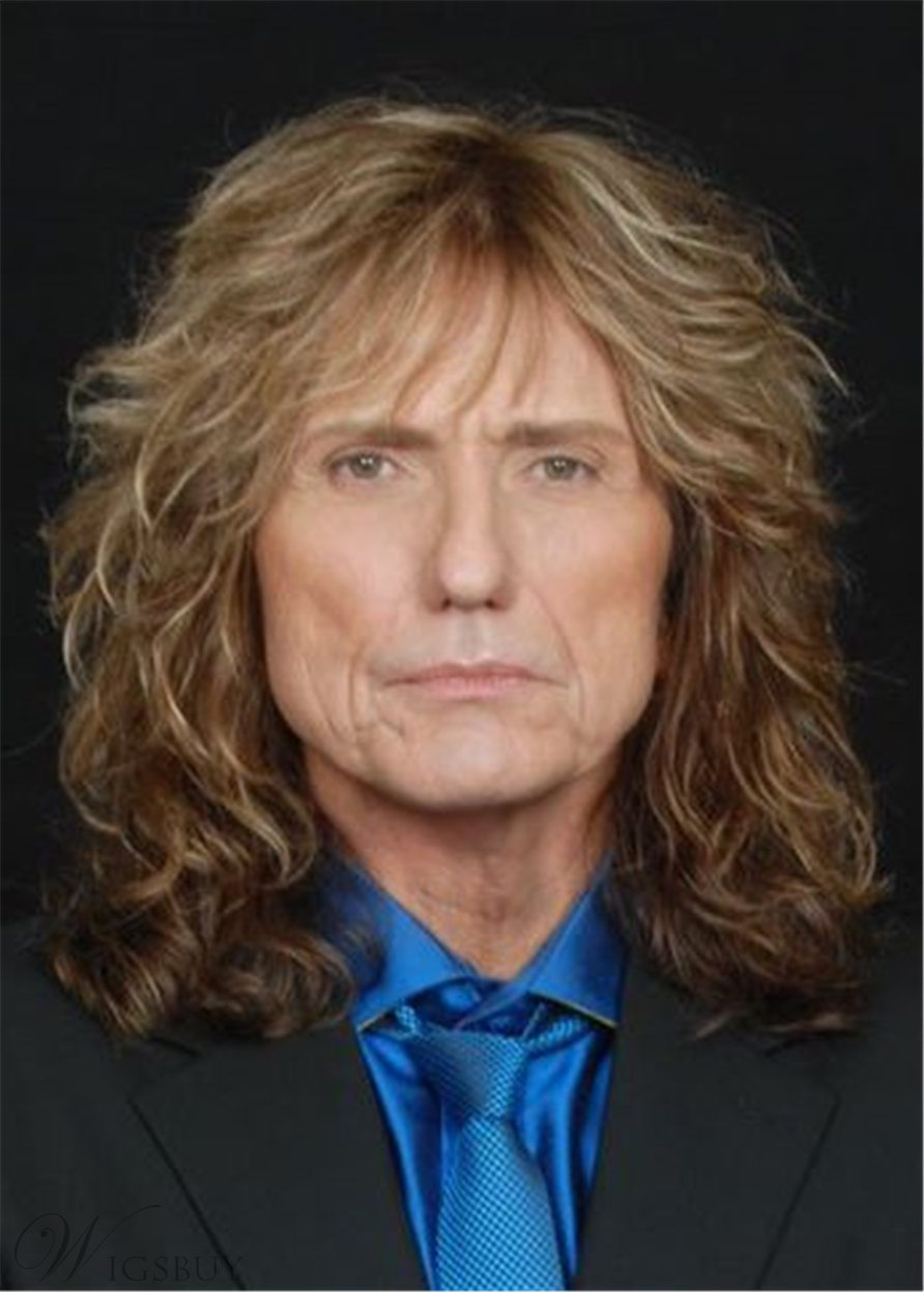 David Coverdale Hairstyle Synthetic Wavy Hair Men S Wig