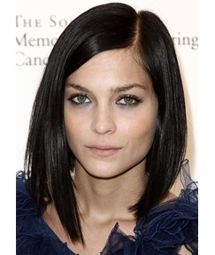 Women's Medium Part Bob Hairstyles Natural Straight 100% Human Hair Lace Front Wigs 20inch