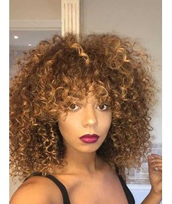 African American Afro Curly Synthetic Hair Women Wig 14 Inches