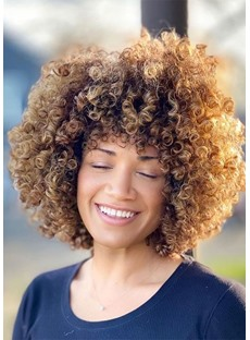 African American Women's Afro Curly Synthetic Hair Capless Wigs 12Inch